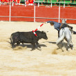 MADRID, SPAIN - SEPTEMBER 10: spanish  bullfight. September 10, - Stock Photo