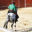 Bullfight on horseback. Typical Spanish bullfight. - Stock Photo