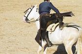 Bullfight on horseback. Typical Spanish bullfight. — Stock Photo