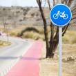 Bicycle lane with white bycicle sign, rural and natural scene - Stock Photo