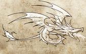 Sketch of tattoo art, dragon line drawing — Stock Photo