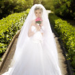 Beautiful bride posing in her wedding day — Stock Photo #10458388