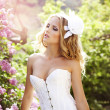 Beautiful bride in a lavender garden - Stock Photo
