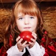 Little Red Riding Hood — Stock Photo #8640077
