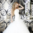 The image of a beautiful bride - Stock Photo