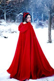 Red riding hood im wald — Stockfoto