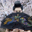 Artistic portrait of japan geisha woman with creative make-up near sakura tree in kimono — Stock Photo