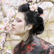 Artistic portrait of japan geisha woman with creative make-up near sakura tree in kimono - Foto Stock