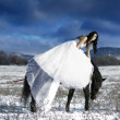 Royalty-Free Stock Photo: Bride with horse in snow