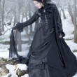 Beautiful gothic girl in the snow - Stock fotografie