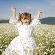 Cute child girl at camomile field - Stock Photo
