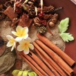 Natural herbal aromatherapy and spa ingredients — Stock Photo