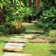 Natural tranquil garden — Stock Photo #9977293