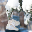 Stock Photo: Snow children's boots