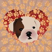 Cute puppy design — Stock Vector