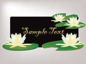 Lilies sample text design — Stock Vector