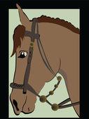 Artistic brown horse head profile — Stock Vector