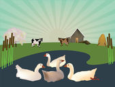 Goose on the lake on a farm — Stock Vector
