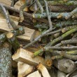 Mixed stacked firewood — Stockfoto #9153045