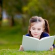 A little girl enjoying reading outdoors on the grass — Stock Photo #8704841