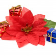 Fake poinsettia with gift boxes — Stock Photo
