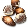 Five chocolate mollusk shaped assortments — Stock Photo #8669906