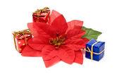 Fake poinsettia with gift boxes — Stock Photo