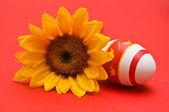 Paskalya yumurtası ve ayçiçeği — Stok fotoğraf