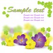 Stock Vector: Yellow and purple spring flowers with green leaves of clover
