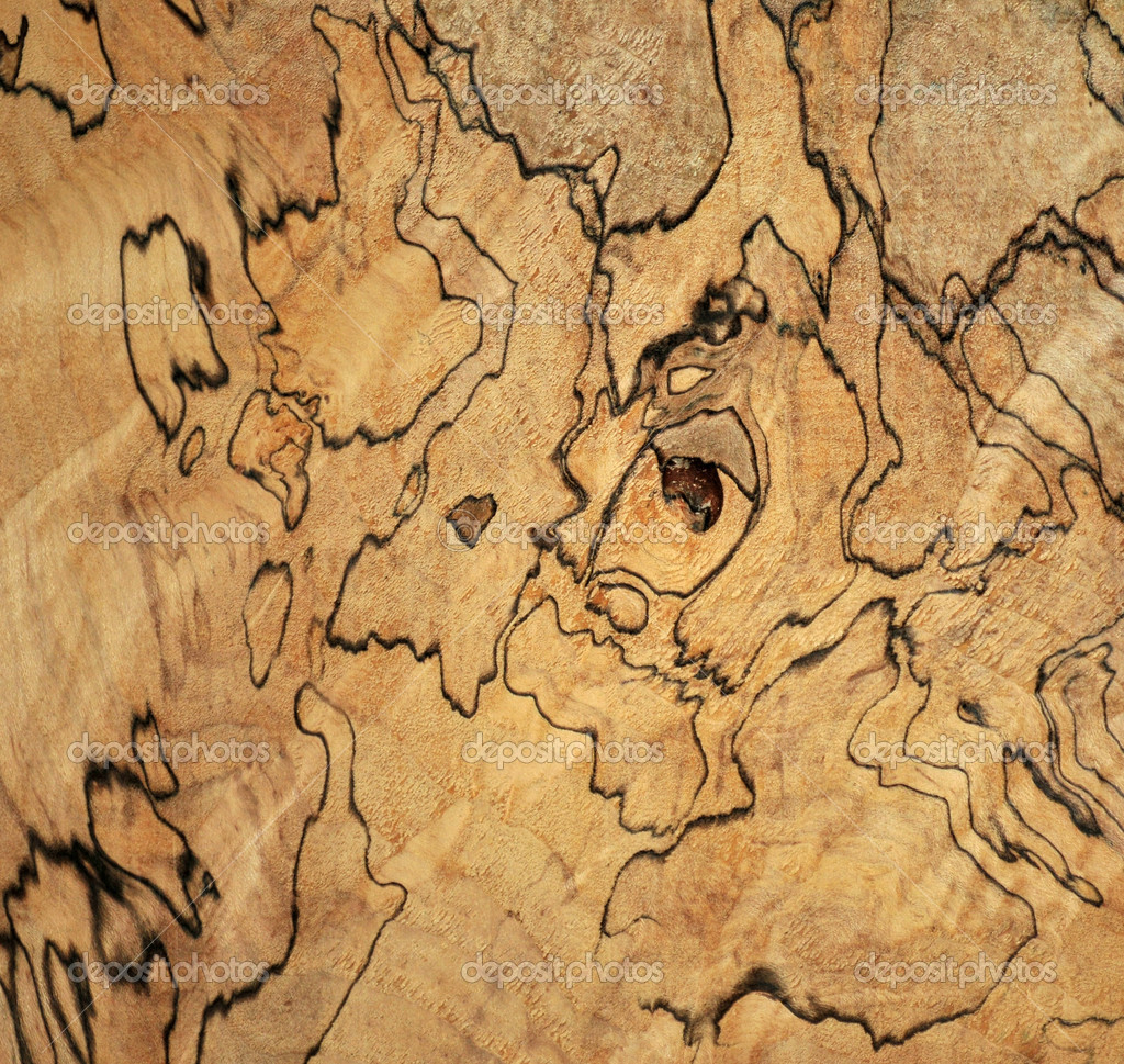 Spalted Maple Lumber Spalted Maple Wood Photo by