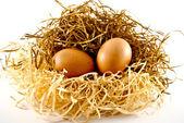 яйца на соломе — Стоковое фото