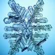 Ice crystal snowflake macro — Stock Photo
