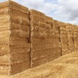 Straw bale — Stock Photo #8910615