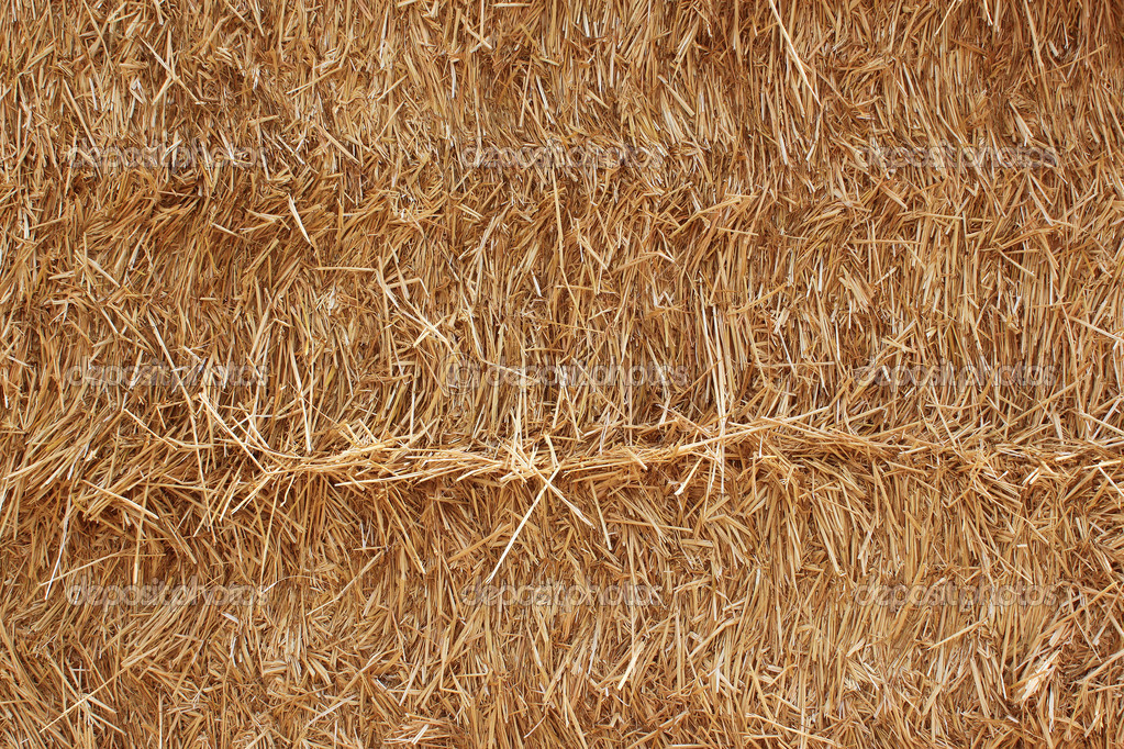 Straws background texture for a natural organic — Stock Photo #8910587