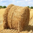 Haystack — Stock Photo #8934795