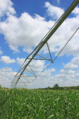 Irrigation system for agriculture — Stock Photo