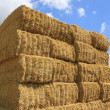 Royalty-Free Stock Photo: Haystack