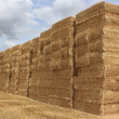 Straw bale — Stock Photo #9273493