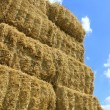 Haystack — Stock Photo #9331245