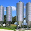 Silot for storing grain — Stock Photo