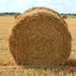 Haystack — Stock Photo #9407825