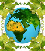 Earth and vine leaf — Stock Photo