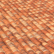 Roof tiles — Stock Photo #9590593
