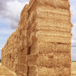 Straw bale — Stock Photo