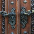 Ancient door handles — Stock Photo #9298294