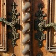 Ancient door handles — Stock Photo #9298379