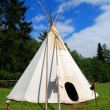 Stock Photo: Indian teepee
