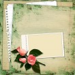 Stamp-frame with roses on vintage background — Stock Photo