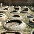 Stock Photo: Vine vessels in OstiAntica