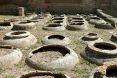 Vine vessels in Ostia Antica — Stock Photo